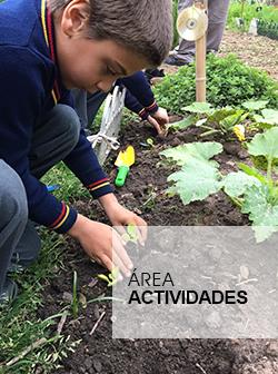 sección área actividades