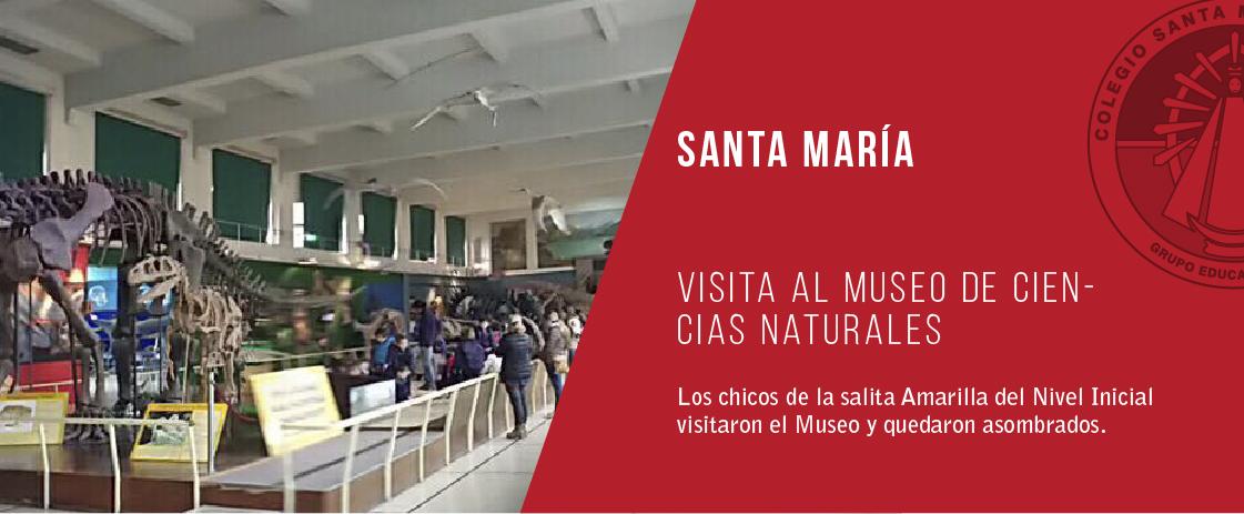 noticia visita al museo de ciencias naturales del colegio santa maría de luján