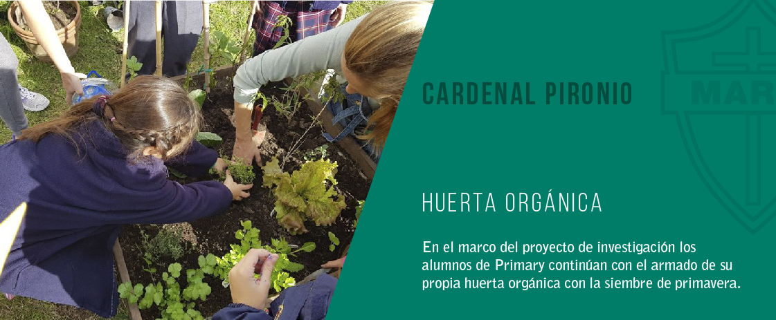 noticia huerta orgánica del colegio cardenal pironio